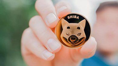 Giá coin Shiba Inu tiếp tục lập đỉnh mới