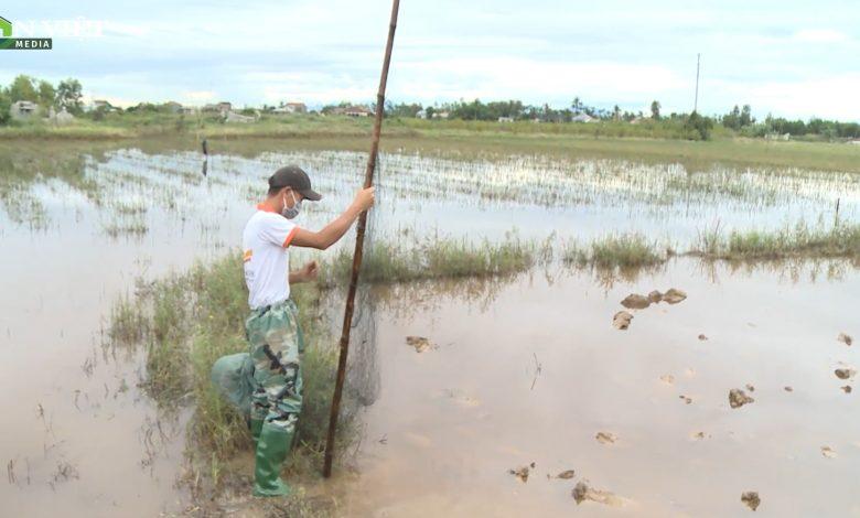 Video: Bắt quả tang các đối tượng săn bắt hàng chục cá thể chim trời ở TT-Huế